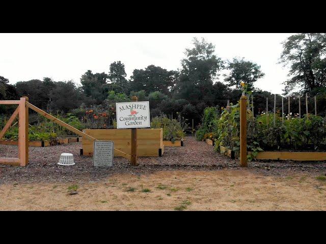 Mashpee Community Garden 2020