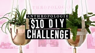 $10 DIY ANTHROPOLOGIE PLANT HANGER  || Actually Alli