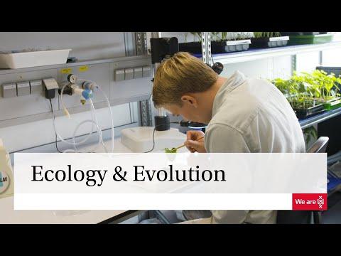 Ecology & Evolution
