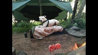 Wild hammock river camp