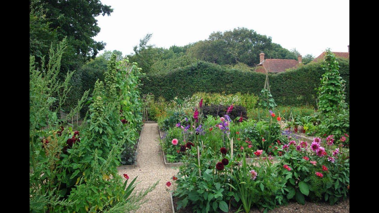 Garden in august in a garden - The Veg Garden In August