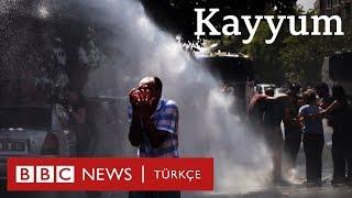 Kayyum: Diyarbakır, Mardin, Van