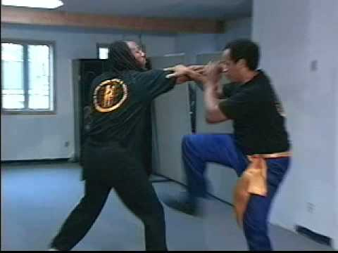 William Cheung Wing Chun - 1996