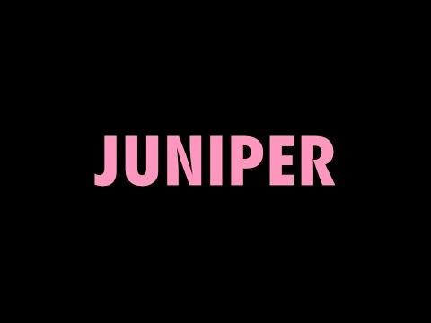 Begonia - Juniper (lyric video)