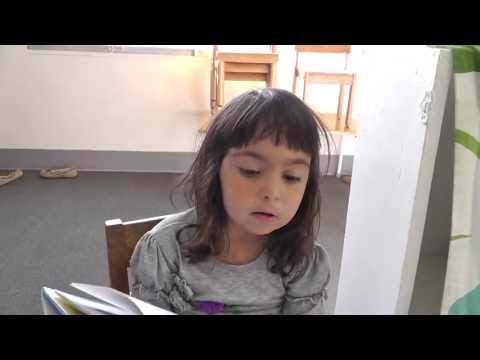 "Teacher ""Artemis"" reading a book to me - Cambridge Montessori School"