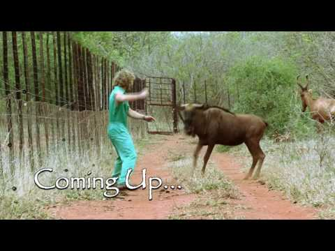 Coming up on Frontier Vets  on 17 September (Episode 9)