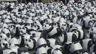 Бангкок: 1600 бумажных панд оккупировали столицу (новости)