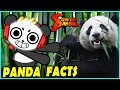 Learn Panda Facts with Combo Panda Educational Video
