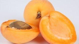 видео Абрикос обыкновенный Armeniaca vulgaris