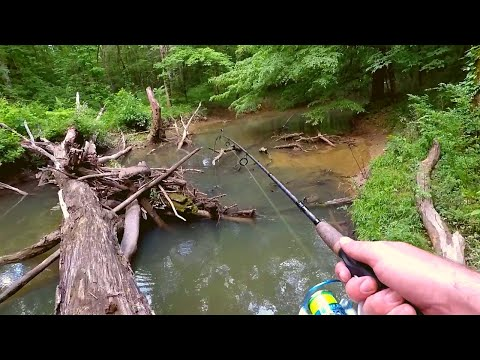 Creek Fishing With Vintage Rebel Lure
