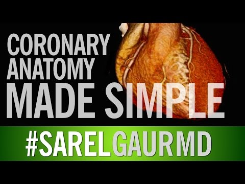 Coronary Artery Anatomy Made Simple