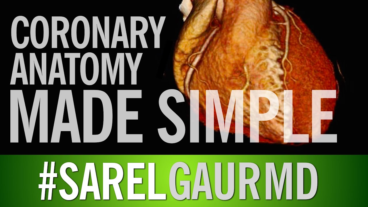 Coronary Artery Anatomy Made Simple - YouTube