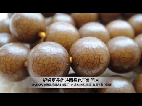 文玩知識 | 什麼是白玉菩提根菩提?白玉菩提根的開片變化
