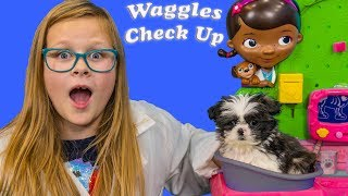 Waggles Puppy Pretend Play Check Up with the Assistant and her Ball Pit