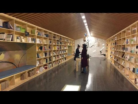 Crowd-funded bookstores on the rise in China