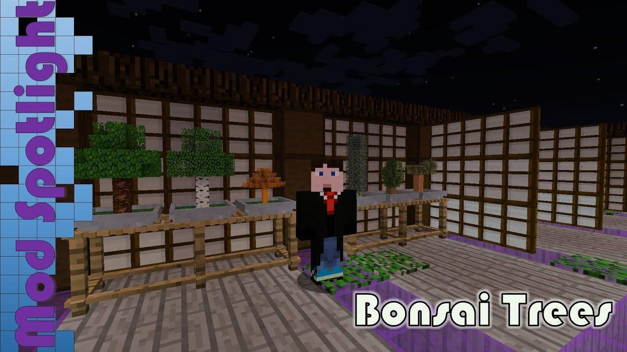 Mod Spotlight Bonsai Trees Youtube