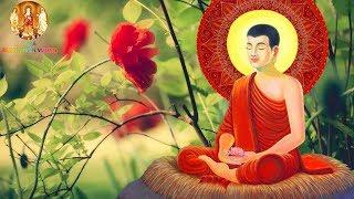 """Nếu Không Có Thiện Căn """"Phước Đức""""Nhân Duyên"""" Thì Kiếp Này Bạn Sẽ Không Gặp Được Phật Pháp"""