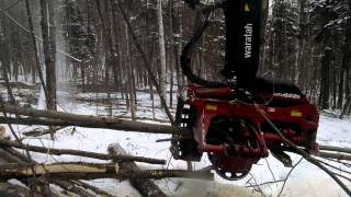 Download Video 622B in hardwood MP3 3GP MP4