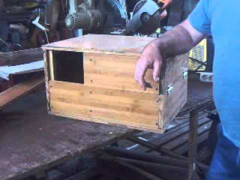 Маточники для кроликов своими руками видео 508