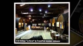 """""""Maipu: Sur la route des vins"""" Coleauxv's photos around Maipu, Argentina (les vignobles au ..."""