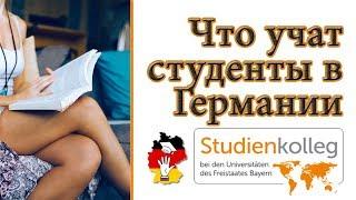 ЛЕГКО! Какие предметы и темы учат на первом курсе в университетах Германии. Studienkolleg