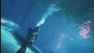 "The Majestic Twelve - ""Trapped Underwater"" Pandora's Legacy"