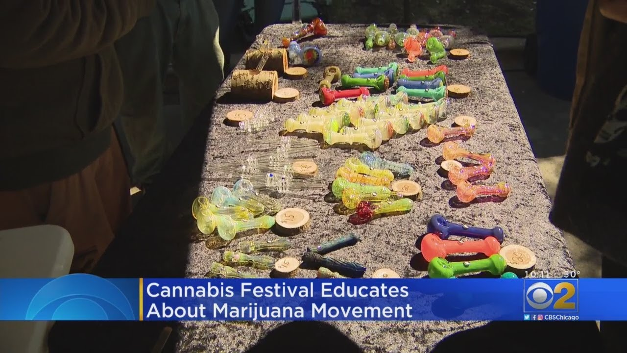 Cannabis Festival Educates About Marijuana Movement