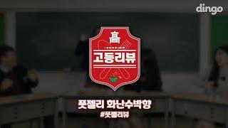 [고등리뷰] 풋젤리편