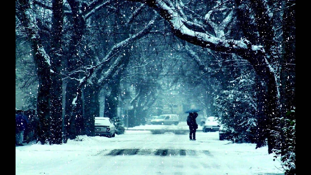 ფრანი და რობი  მერე რა რომ ზამთარია
