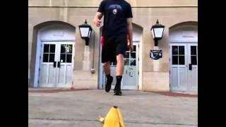 That Was A Close One...vine Video!!!banana Back Flip