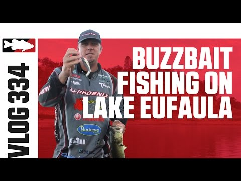 Buzzbait Fishing With Russ Lane At The 2015 Spro Writer's Conference On Lake Eufaula
