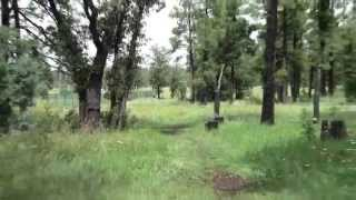 Disc Golf Adventure Bros Episode 3 in HD Woodland Course Arizona 2013
