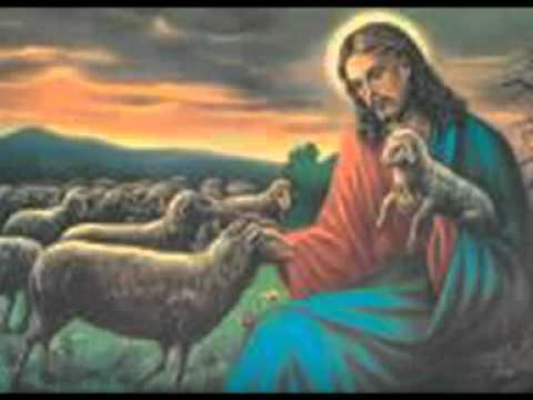 L'amore di Gesù per gli animali finora tenuto nascosto – YouTube.mp4