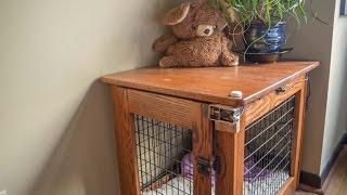 Voice controled dog crate door
