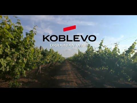 KOBLEVO - the best Ukrainian wine!