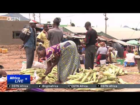Tanzanian government denies dry weather is causing a food scarcity