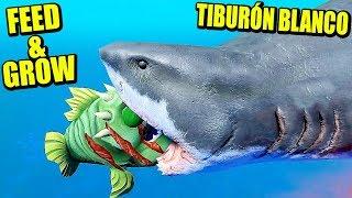 DEVORANDO TIBURONES - FEED & GROW: FISH | Gameplay Español - VICIO ONE MORE TIME