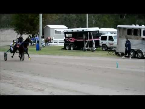 #2 Harness Pony Racing Bermuda Dec.26 2011.