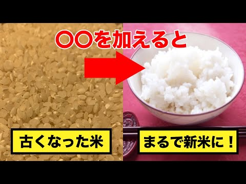 古くなった米(古米)をおいしく炊く方法!なんと〇〇を加えるだけ。【豆知識】