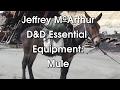 D&D Essential Equipment: Mule