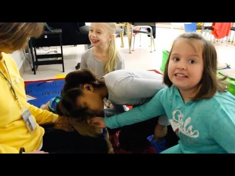 Hand in Paw's Petscription for the Classroom Program
