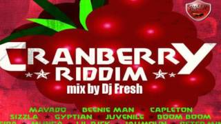 DJ FRESH CRANBERRY RIDDIM  MIX- CLAIMS RECORDS _ GUTTY BLING (SFS)