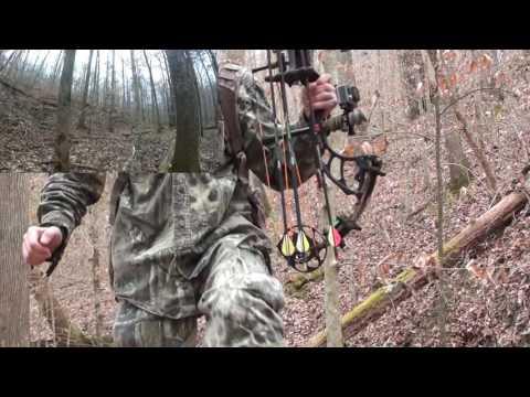 Alabama Public Land Hog Stalk