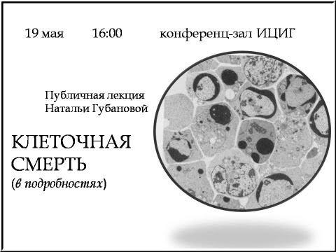 Некроз и апоптоз - bio-