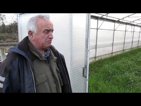 Ian Neale Snoop Doggs friend talking about preparing his Keder Greenhouse