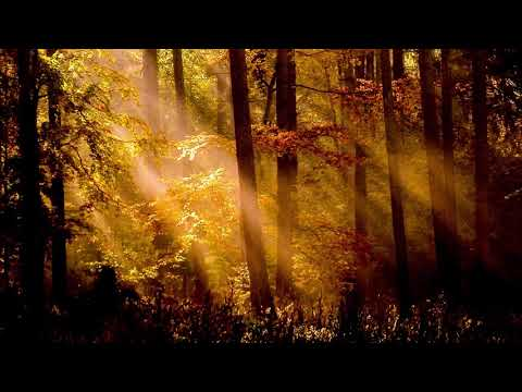 Angel Dreams Healing Song (15 minute meditation, relaxation, dreaming)