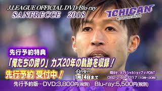 先行予約受付中!JリーグオフィシャルDVD・Blu-ray「サンフレッチェ広島2018 ICHIGAN」