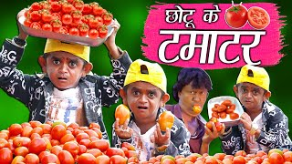 CHOTU KE TAMATAR | छोटू के टमाटर | Khandesh Hindi Comedy | Chotu Dada Comedy Video