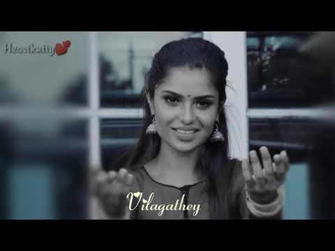 💕vilagathey-album-song-💞official-stus-video
