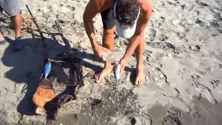 Grilling Fish On El Cuco Beach, El Salvador